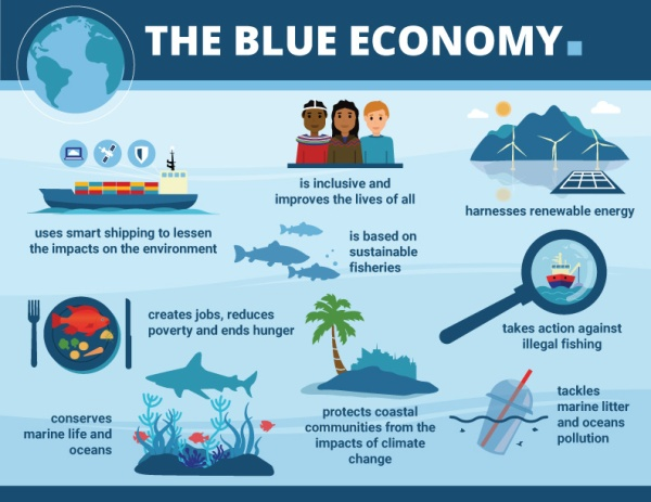 SBEC-Infographic